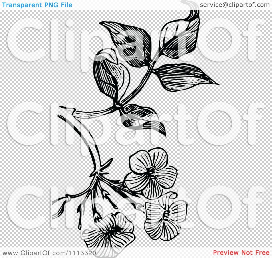 Vintage flower tattoo designs comousar vintage flower tattoo designs the png file has a izmirmasajfo Images