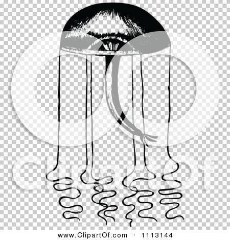 Transparent clip art background preview #COLLC1113144
