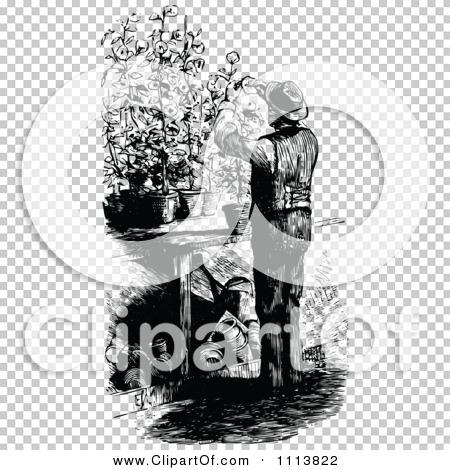 Transparent clip art background preview #COLLC1113822