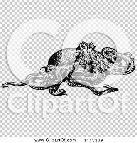 Transparent clip art background preview #COLLC1113139