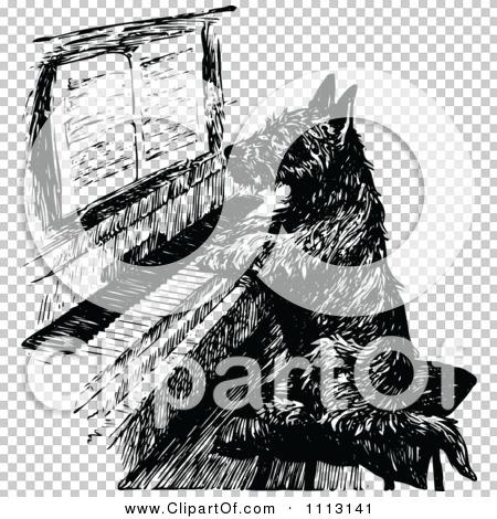 Transparent clip art background preview #COLLC1113141