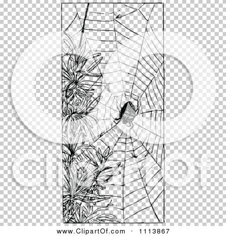 Transparent clip art background preview #COLLC1113867