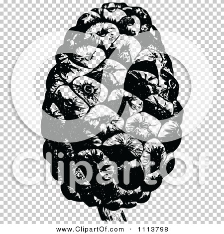 Transparent clip art background preview #COLLC1113798