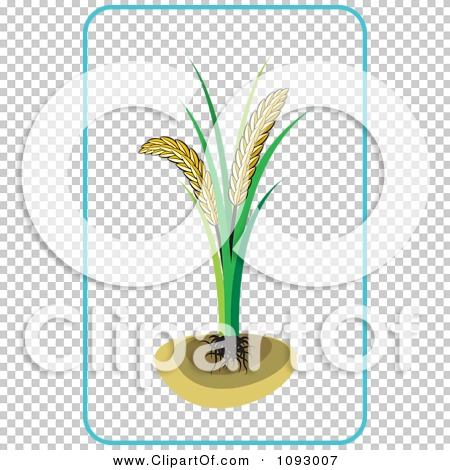 Transparent clip art background preview #COLLC1093007