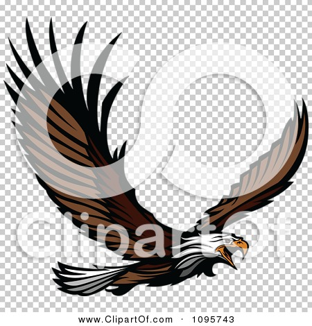jpg  png  Eagle Wings Logo Png