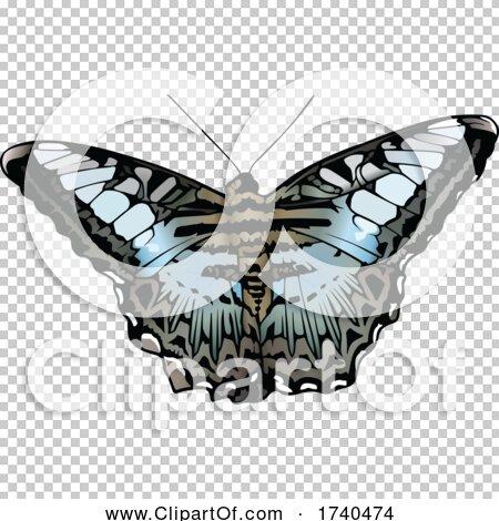 Transparent clip art background preview #COLLC1740474