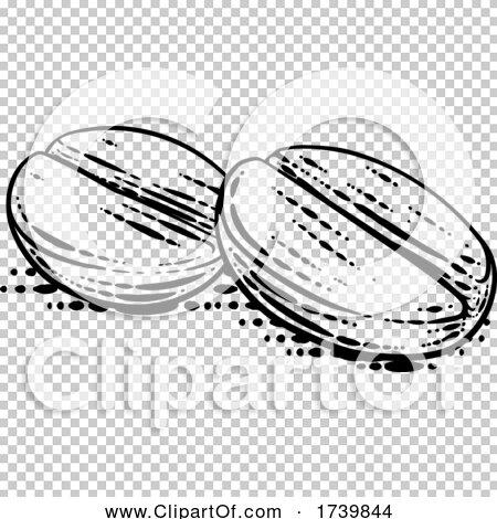 Transparent clip art background preview #COLLC1739844