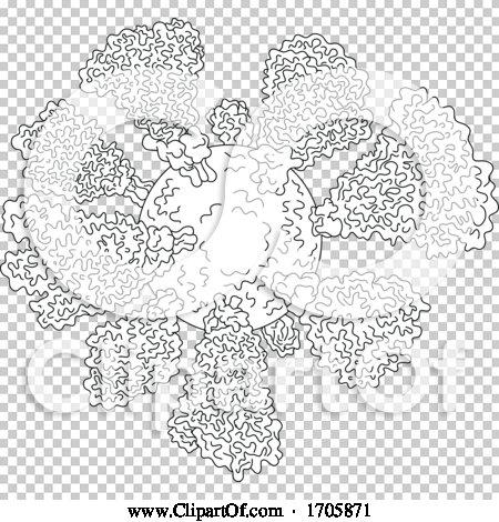 Transparent clip art background preview #COLLC1705871