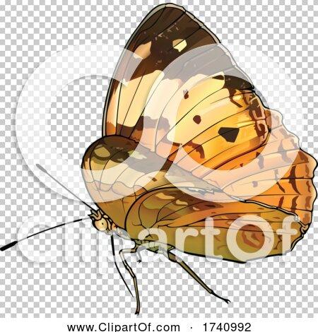 Transparent clip art background preview #COLLC1740992