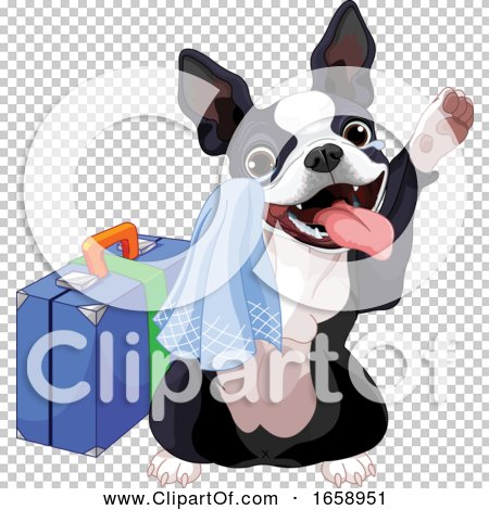 Transparent clip art background preview #COLLC1658951