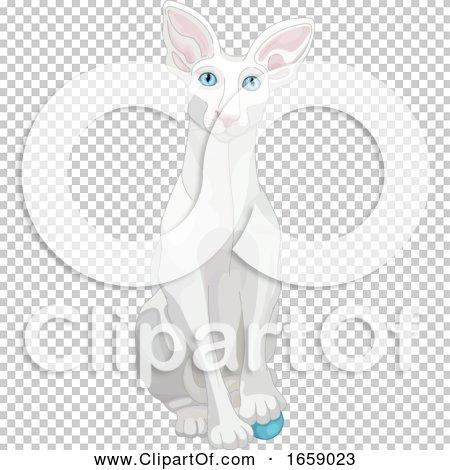Transparent clip art background preview #COLLC1659023