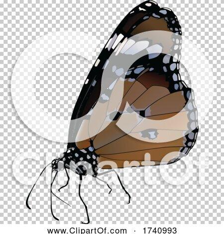 Transparent clip art background preview #COLLC1740993
