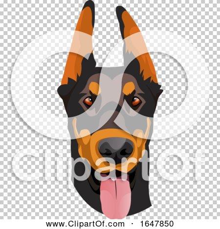 Transparent clip art background preview #COLLC1647850