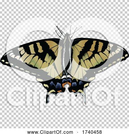 Transparent clip art background preview #COLLC1740458