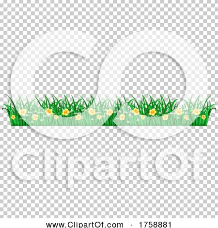 Transparent clip art background preview #COLLC1758881