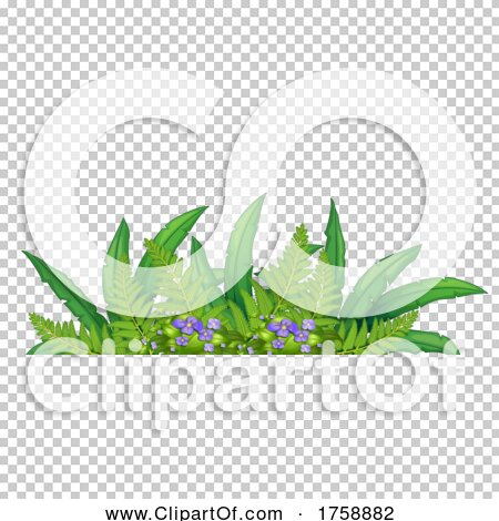 Transparent clip art background preview #COLLC1758882