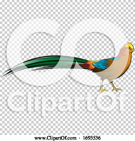 Transparent clip art background preview #COLLC1693536