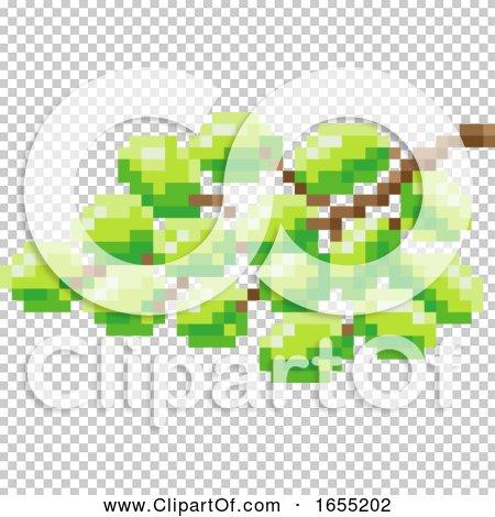 Transparent clip art background preview #COLLC1655202