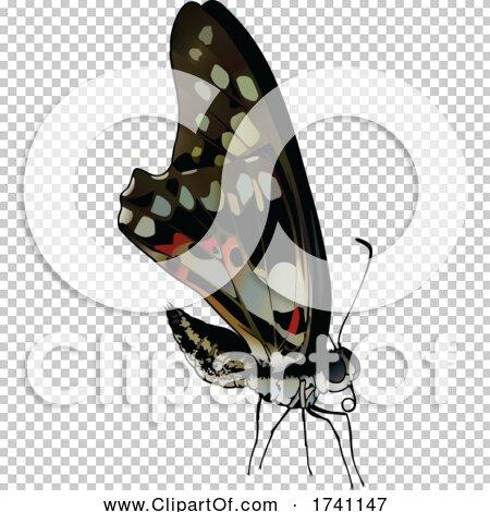 Transparent clip art background preview #COLLC1741147