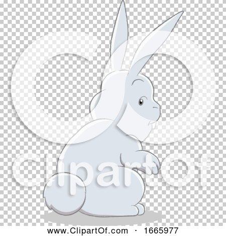 Transparent clip art background preview #COLLC1665977
