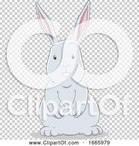 Transparent clip art background preview #COLLC1665979