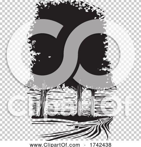 Transparent clip art background preview #COLLC1742438