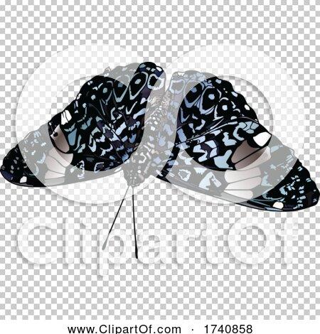 Transparent clip art background preview #COLLC1740858