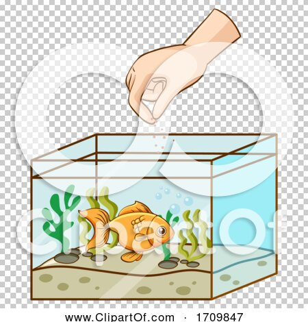 Transparent clip art background preview #COLLC1709847