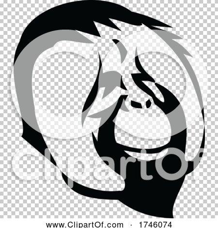 Transparent clip art background preview #COLLC1746074