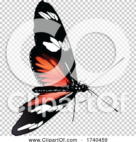 Transparent clip art background preview #COLLC1740459