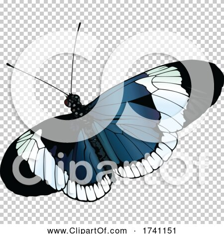 Transparent clip art background preview #COLLC1741151