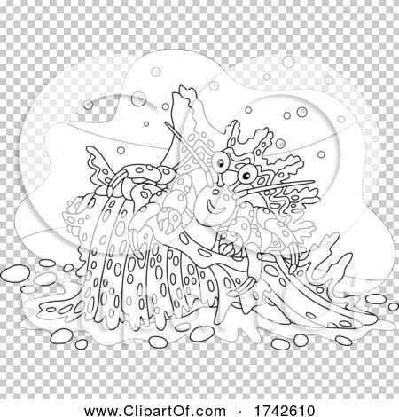 Transparent clip art background preview #COLLC1742610