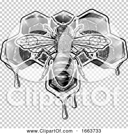 Transparent clip art background preview #COLLC1663733