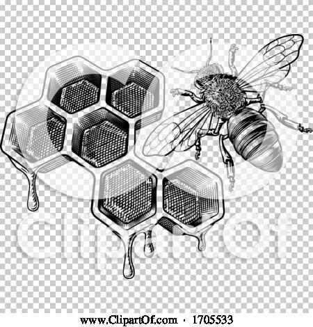 Transparent clip art background preview #COLLC1705533