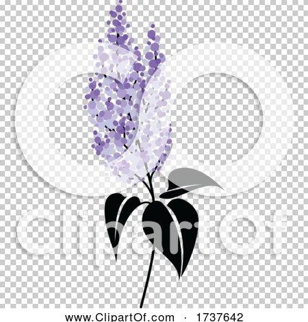 Transparent clip art background preview #COLLC1737642