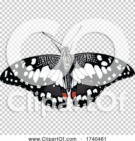 Transparent clip art background preview #COLLC1740461