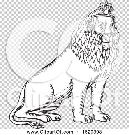 Transparent clip art background preview #COLLC1620308