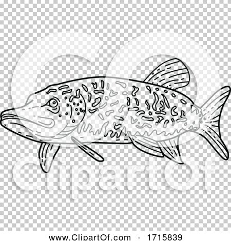 Transparent clip art background preview #COLLC1715839