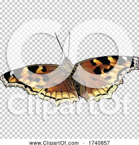 Transparent clip art background preview #COLLC1740857