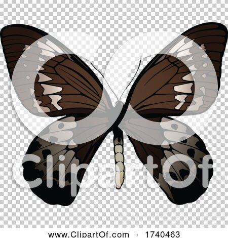 Transparent clip art background preview #COLLC1740463