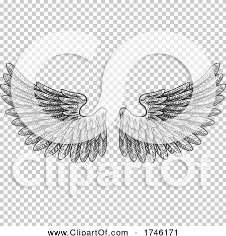 Transparent clip art background preview #COLLC1746171