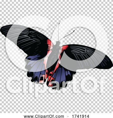 Transparent clip art background preview #COLLC1741914