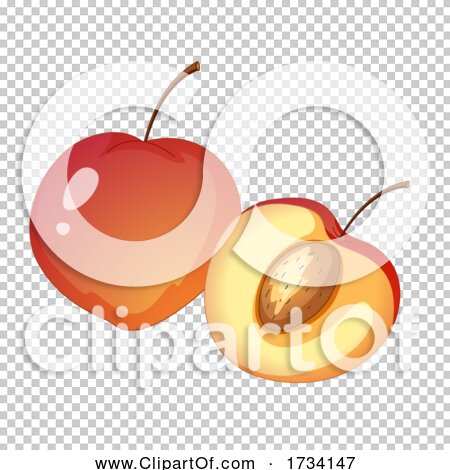 Transparent clip art background preview #COLLC1734147