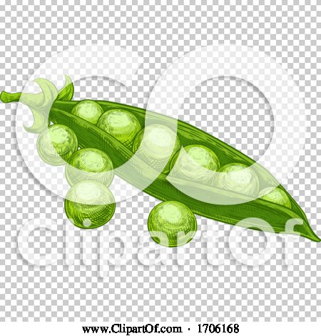 Transparent clip art background preview #COLLC1706168