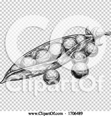 Transparent clip art background preview #COLLC1706489