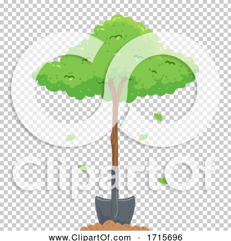 Transparent clip art background preview #COLLC1715696