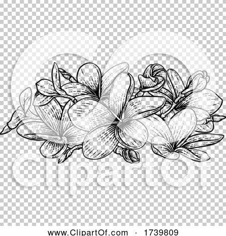 Transparent clip art background preview #COLLC1739809