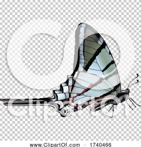 Transparent clip art background preview #COLLC1740466