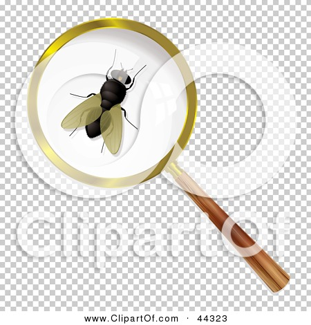 Transparent clip art background preview #COLLC44323