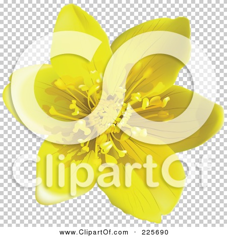 Transparent clip art background preview #COLLC225690